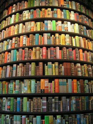 8536d681f28f66caa54226bbccc05e6b--bookstores-libraries.jpg